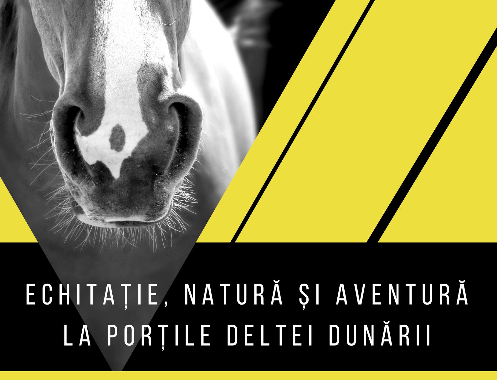 Echitație, natură și aventură la porțile Deltei Dunării